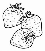 Strawberry Coloring Strawberries Pages Fruits Drawing Fruit Momjunction Drawings sketch template