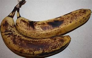 Banana Berry Oat Muffins BAKING & BREWING