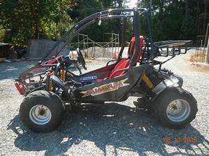 Side By Side Buggy : 150 cc side by side dune buggy lantzville parksville qualicum beach ~ Eleganceandgraceweddings.com Haus und Dekorationen