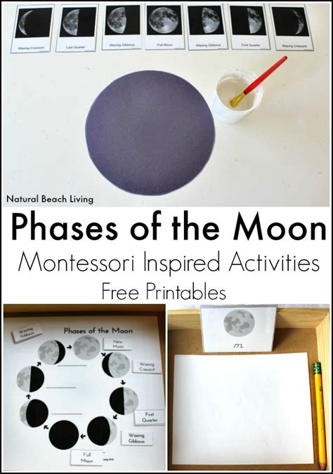 moon activities montessori astronomy 659 | moon phases pin 2