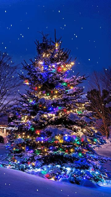 wallpaper christmas animations free 30 amazing tree gifs to best animations
