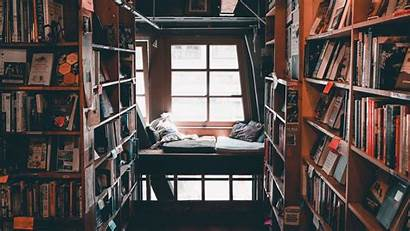 Library Books Reading Background Shelves 1080p Comfort