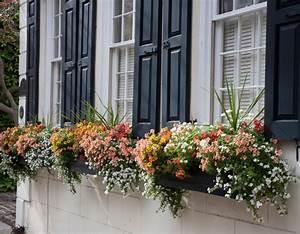Pflanzen Für Balkonkästen Sonnig : balkonk sten bepflanzen s dbalkon sonnig sommer pflanzen pinterest balkonk sten bepflanzen ~ Bigdaddyawards.com Haus und Dekorationen