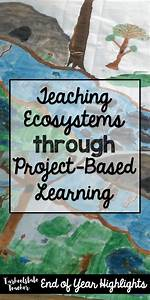 Ecosystems Environments Project Based Learning Project That Integrates Arts  Science  Writing