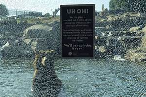Oakland Zoo: Child, not grizzly bears, cracked glass ...