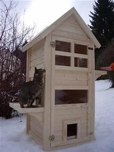 Katzenhaus Selber Bauen : katzenhaus kratzbaum katzenturm feral cat shelter feral ~ A.2002-acura-tl-radio.info Haus und Dekorationen