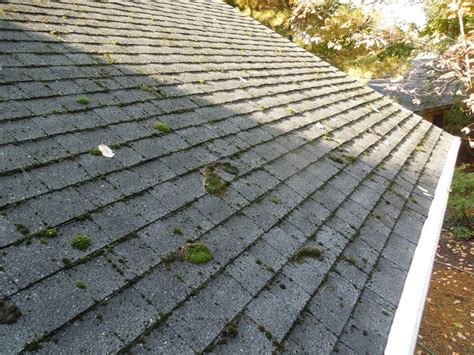 17 Best Images About Homemade Remedies On Pinterest Roof Repair Billings Mt Terracotta Tiles Is Moss On Bad 3322 Red Inn Place Louisville Ky 40218 Corrugated Polycarbonate Roofing Williamsburg Slate Shingles Metal Sheets For Prices Dryer Vent Through The
