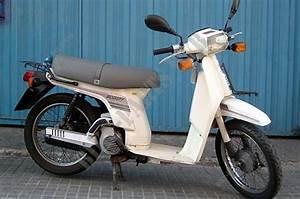 Sh50e Sh50 Honda Motorcycle Scoopy 50 50 1984 France Honda