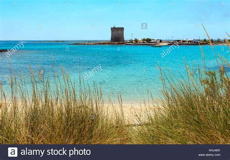 Pug Porto Cesareo by Porto Cesareo Stock Photos Porto Cesareo Stock Images