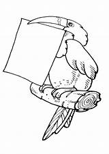 Letter Coloring Pages sketch template