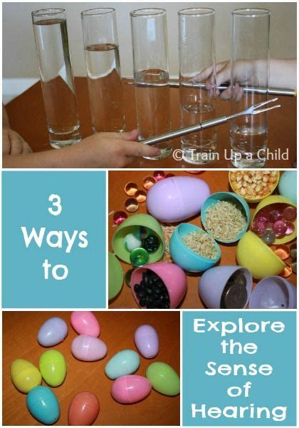 12 Games and Activities to Teach Children about the Five ...