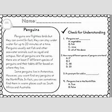 1000+ Ideas About 2nd Grade Reading Comprehension On Pinterest  Character Traits Activities