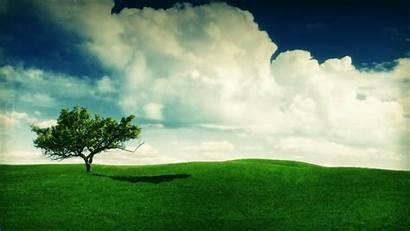 Landscape 1080 1920 Nature Desktop 1080p Natural