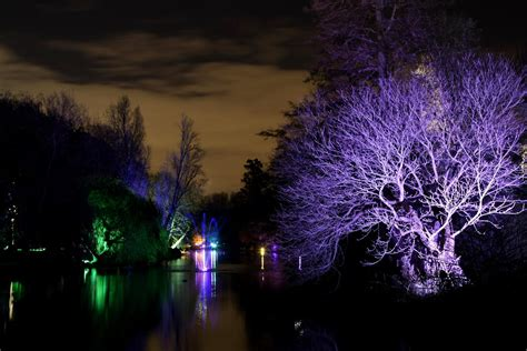 the enchanted woodlands at syon park london s best