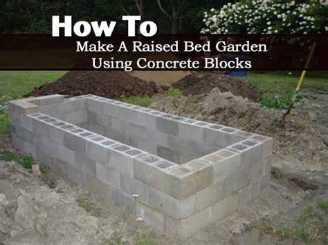 raised bed garden  concrete blocks