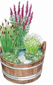 Miniteich Pflanzen Set : die besten 17 ideen zu miniteich auf pinterest mini teich teich handwerk und kleiner gartenteich ~ Buech-reservation.com Haus und Dekorationen