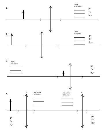 pictures diagram worksheet getadating