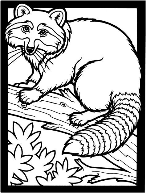 ⭐ free printable cocomelon coloring book. Free Raccoon Coloring Pages