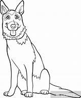 Coloring Shepherd German Library sketch template