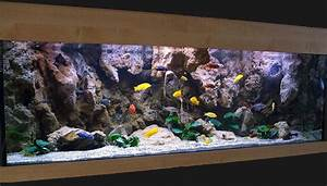3D Aquarium Background and modules OUT OF BUSINESS at
