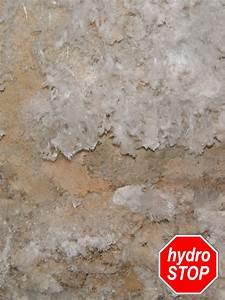 Feuchtigkeit In Der Wand : sch den durch bausch dliche salze salzausbl hungen wei er schimmel ~ Sanjose-hotels-ca.com Haus und Dekorationen