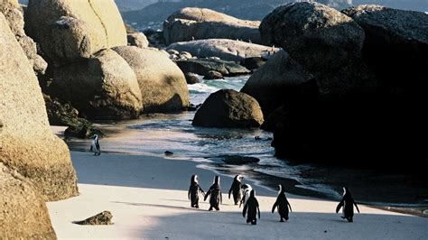 South Africa Tours From Kuoni Travel