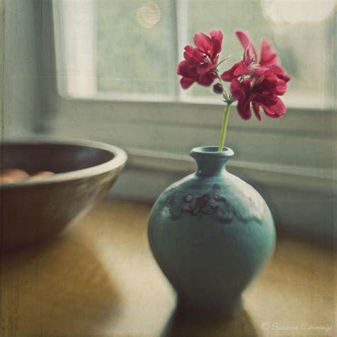 Still Life Photography Examples Wwwpixsharkcom