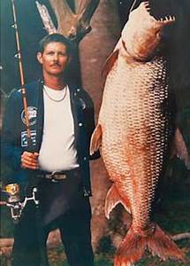 9 Largest Fish Ever Caught | Total Pro Sports