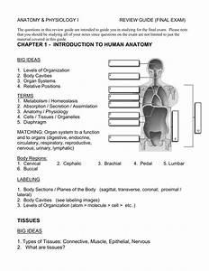 Final Exam Review Guide