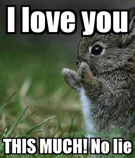 I Love You This Much Meme - i love you this much no lie poster shaaaaan keep calm o matic