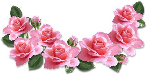 pin oleh bejo sutejo  bunga mawar kuning gambar