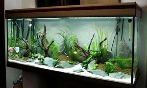 100 ideas integrate aquarium designs in the wall or in the With kitchen colors with white cabinets with tropical fish metal wall art