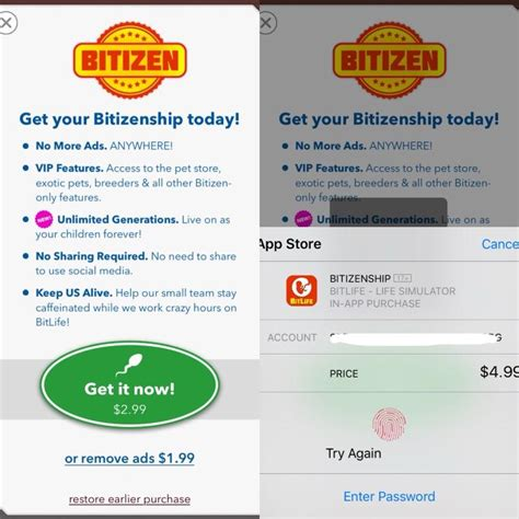 bitlife bit fake pay