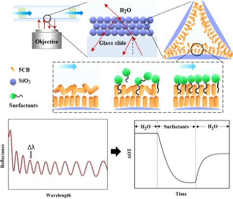 Using Reflectometric Interference Spectroscopy to Real ...