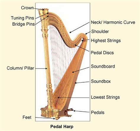 what is a l harp sylvia woods harp center parts of a harp
