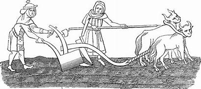 Anglo Saxon Ploughmen Medieval Middle Ages Agriculture
