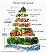 Image result for raw foods pyramid