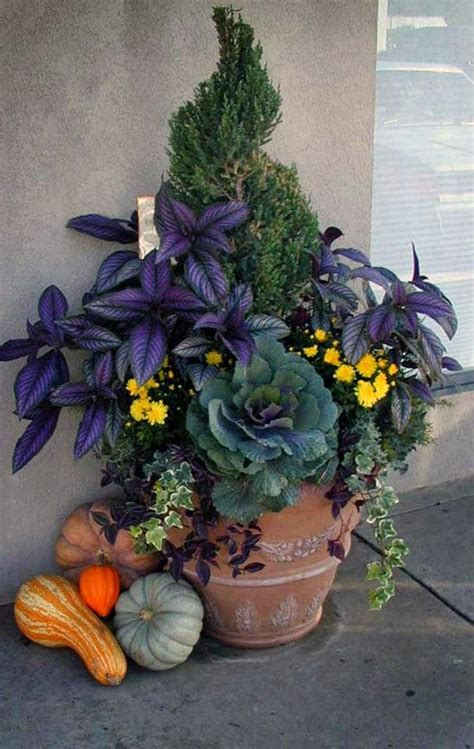 Mod Vintage Life Fall Container Gardening