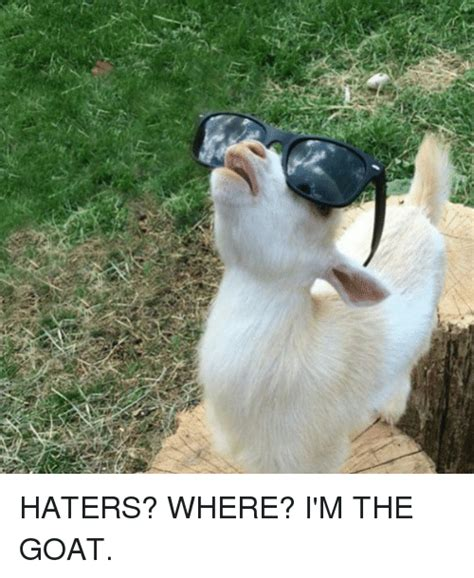 Billy Goat Meme - goat memes goat sayings and quotes quotesgram billy goat meme 28 images goat memes goat meme billy