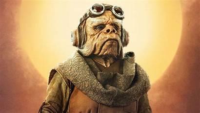 Yoda Mandalorian Ending Race Explained Species 1280
