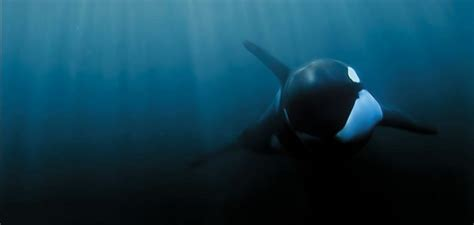 blackfish documentary propaganda skeptoid