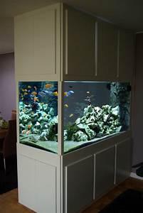 Aquarium Als Raumteiler : aquarienbau s sswasser ~ Michelbontemps.com Haus und Dekorationen