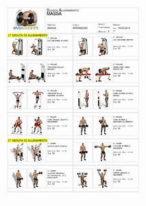 Scheda allenamento massa muscolare principiante