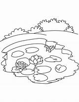 Pond Coloring Pages Water Lake Ecosystem Lily Printable Drawing Nature Bottle Pollution Ocean Drawings Template Getdrawings Labels Getcolorings Sketch Templates sketch template