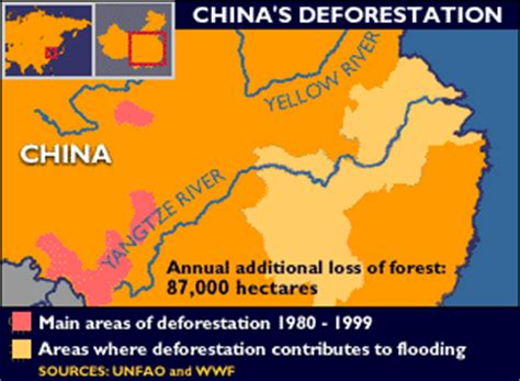 bbc news asia pacific chinas floods  deforestation