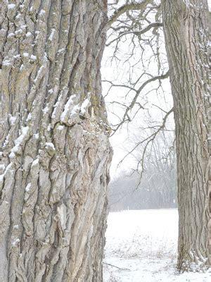 Herrlich Shabby Bad White And Shabby Januar 2011