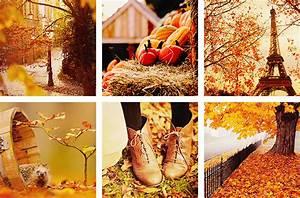 Autumn Quotes We Heart It. QuotesGram