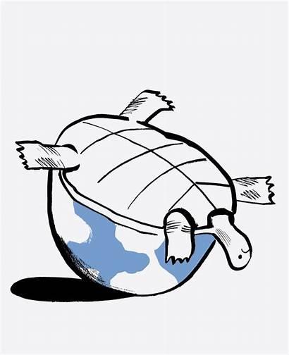Climate Change Extinction Species Drawing Illustration Endangered