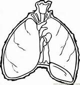 Coloring Lungs Printable sketch template