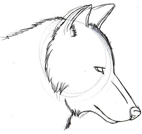 wolf drawing easy step  step  getdrawingscom